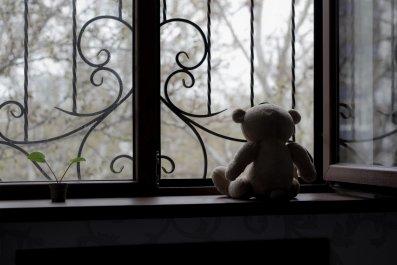 sad bear stock photo
