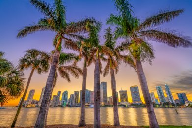 8 Great Things to Do in Miami