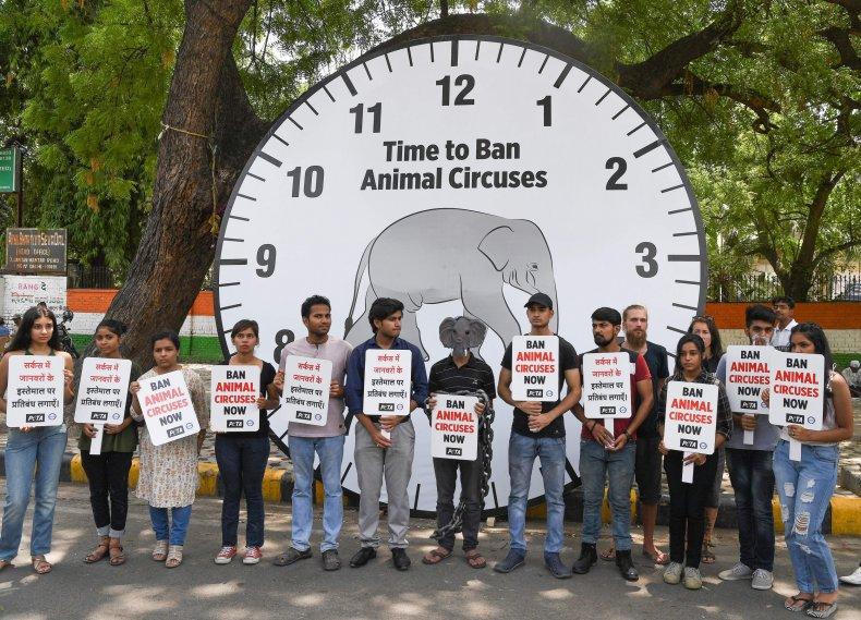 PETA CIrcus protest