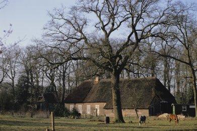Drenthe house in Netherlands