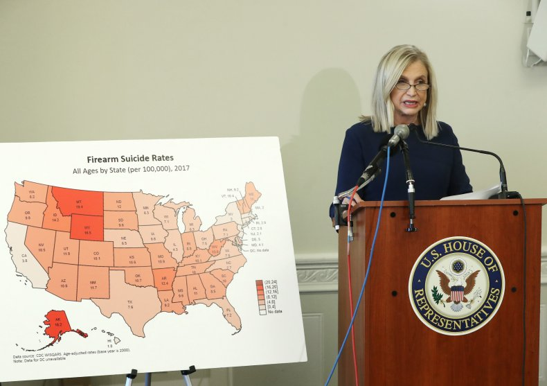 Rep. Carolyn Maloney Holds A Press Conference On Gun Violence And Suicide Prevention