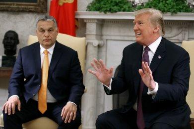 Donald Trump, Viktor Orban, White House, meeting
