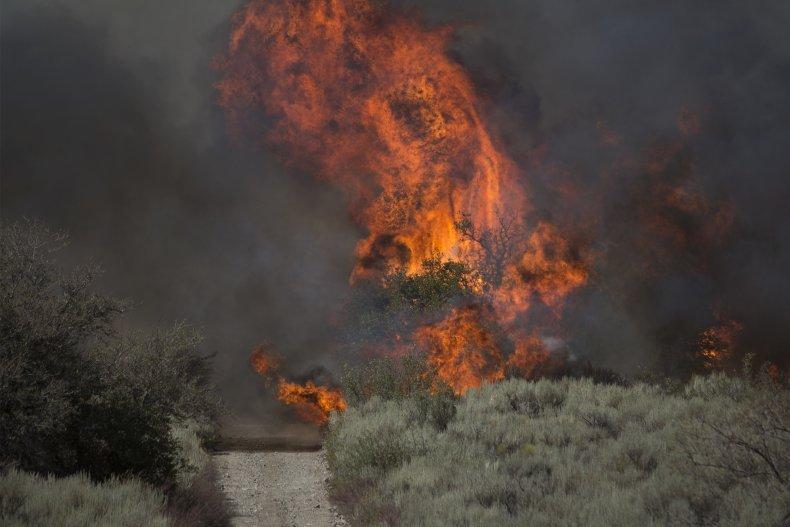 California wildfire San Bernardino National Forest 2016