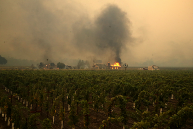 How Wildfires in Northern California Affect Wine Country