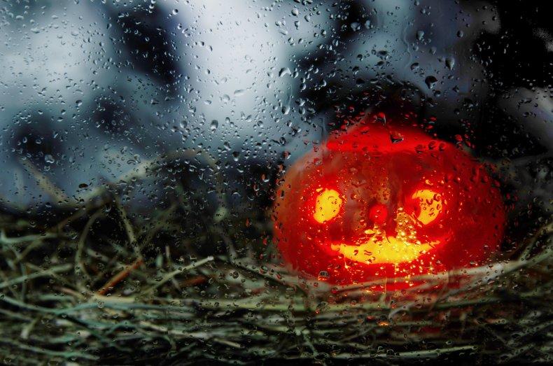 Halloween, pumpkin, rain