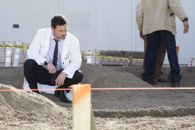 'Grey's Anatomy' Doctors Face Halloween Horrors on Season 16 New Episode