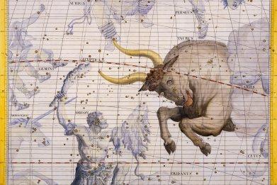 taurus constellation
