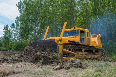bulldozer, construction, trees