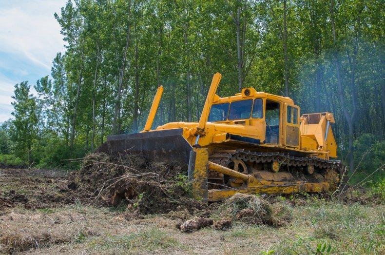 bulldozer, construction, trees