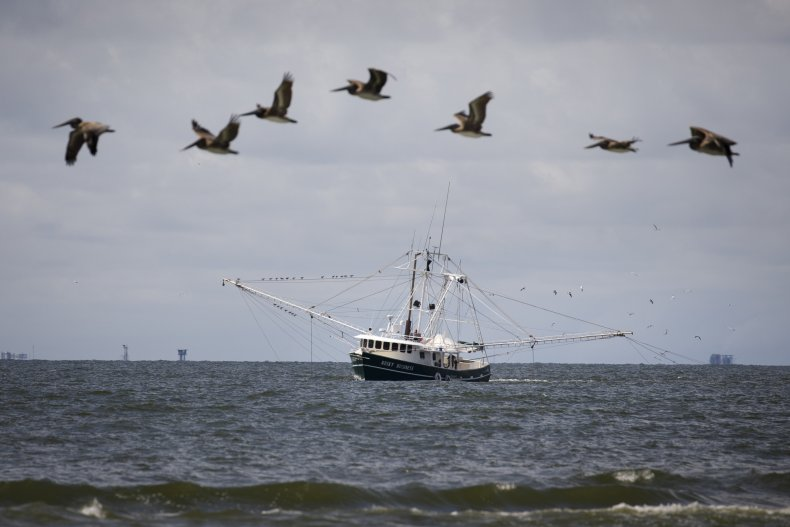 trawler in louisiana