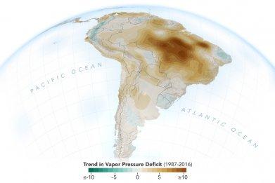 Amazon Rainforest, air moisture