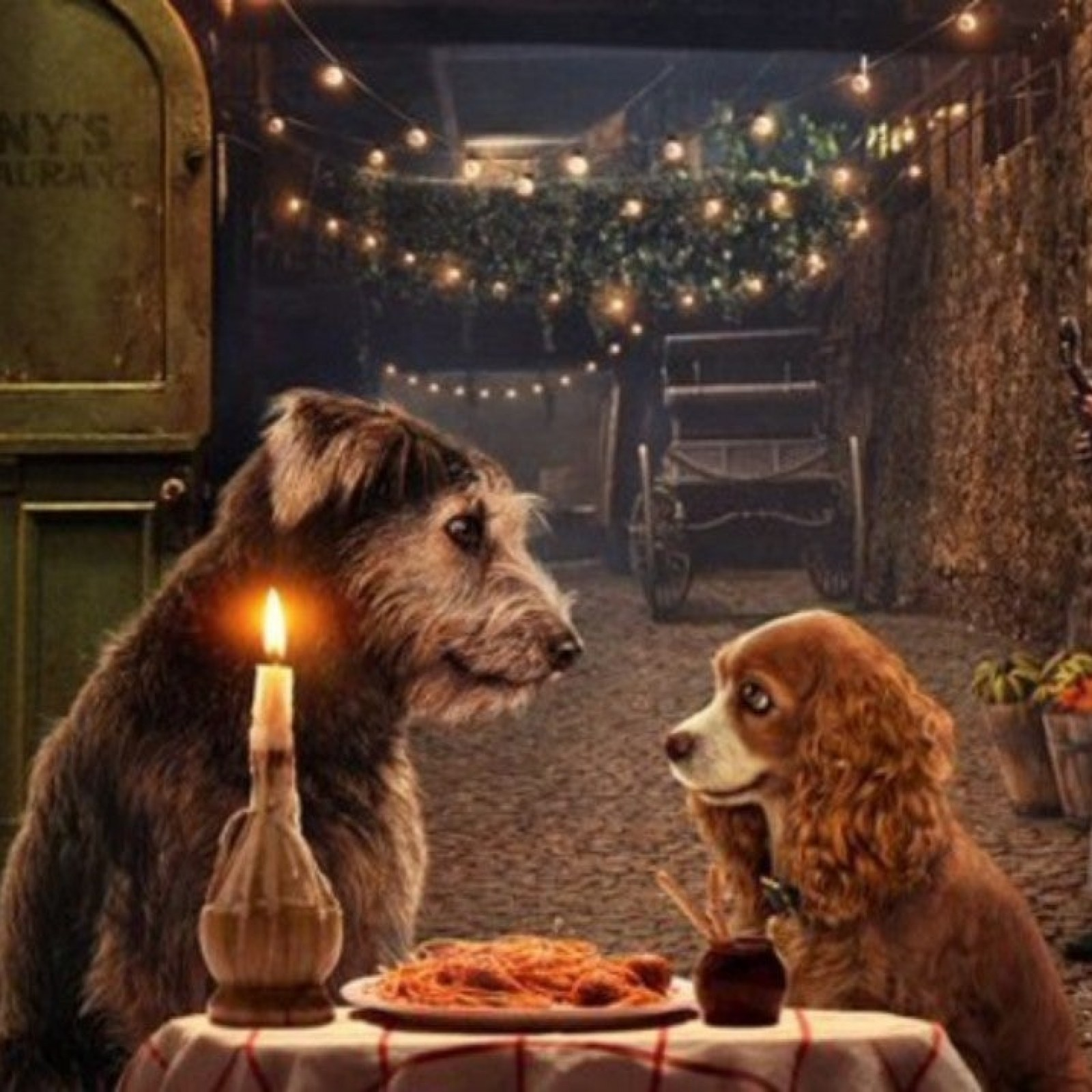 Lady And The Tramp 2019 Everything You Need To Know About The Disney Live Action Remake