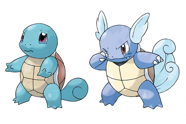 squirtle wartortle pokemon sword and shield