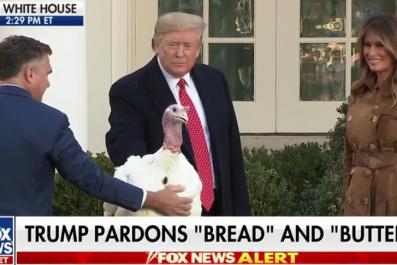 trump pardons turkeys jokes impeachment