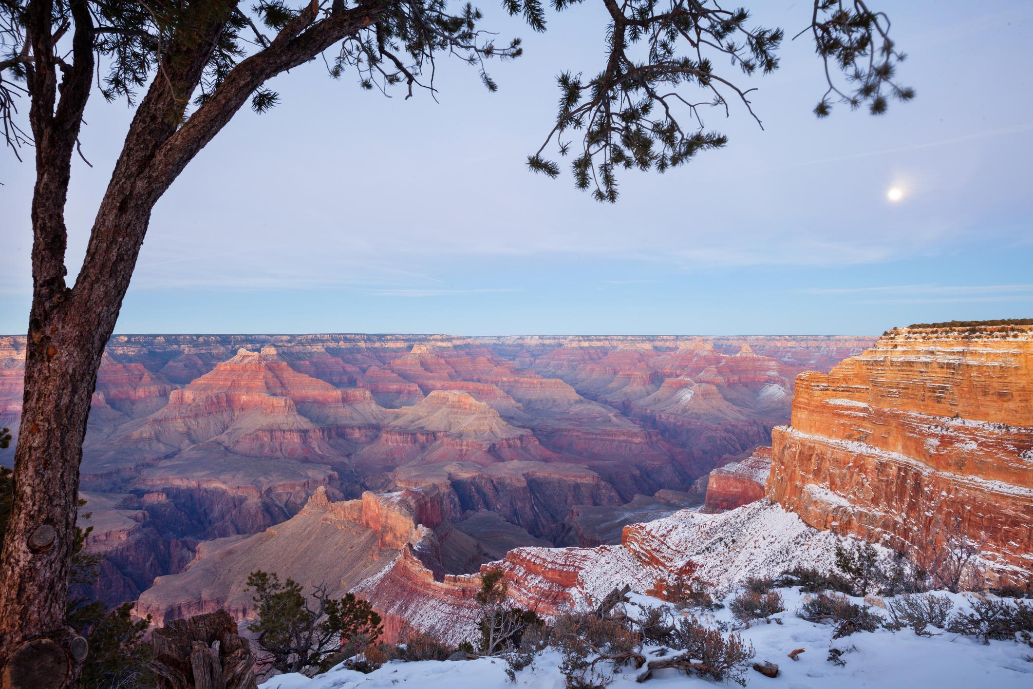 Grand Canyon National Park Shares Photo Of Visitors Walking