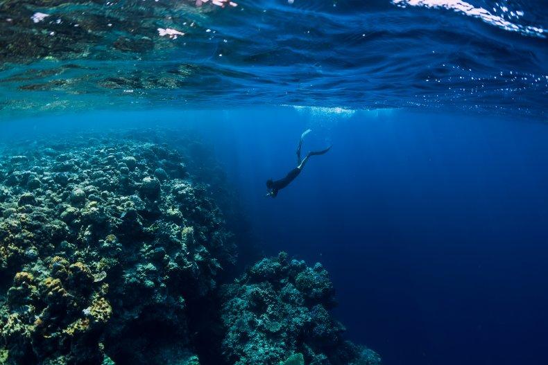 Free diving man