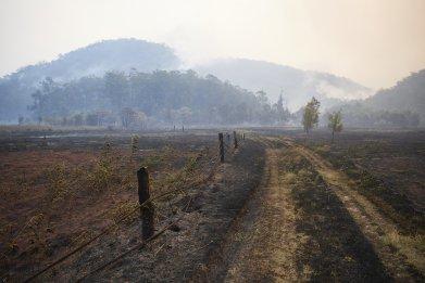 Bush fires, New South Wales, Australia