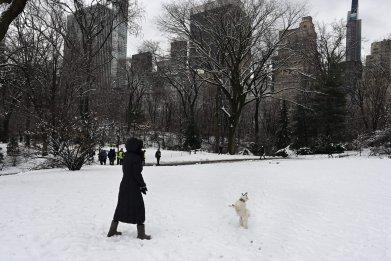 Central Park New York City snow