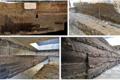 Timber found at site of Roman villa.