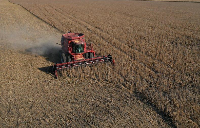 soybean farmer