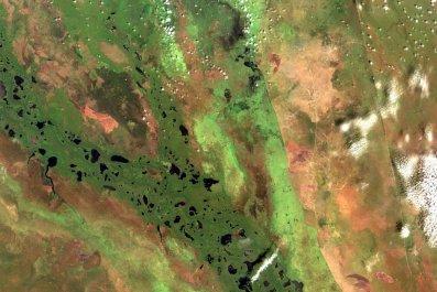 Sudd Wetlands, South Sudan