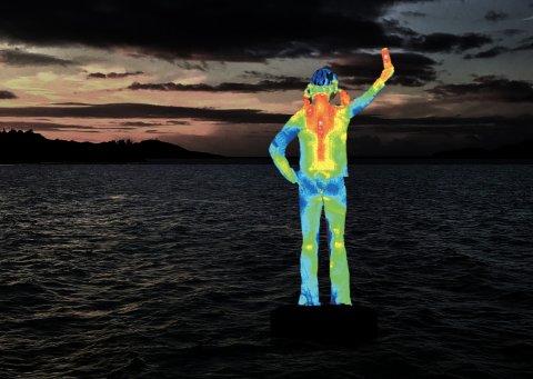Ocean Siren Underwater Art
