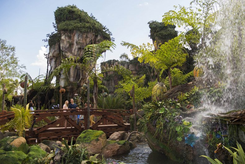 Disney Animal Kingdom Pandora: World of Avatar
