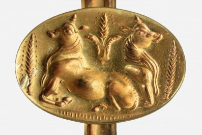 A gold ring depicts bulls and barley