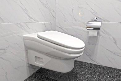 Standard Toilet slanted toilet