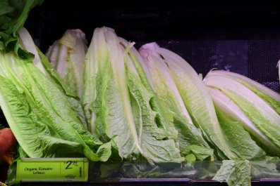 romaine lettuce on sale