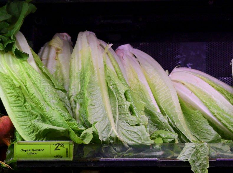 romaine lettuce on sale