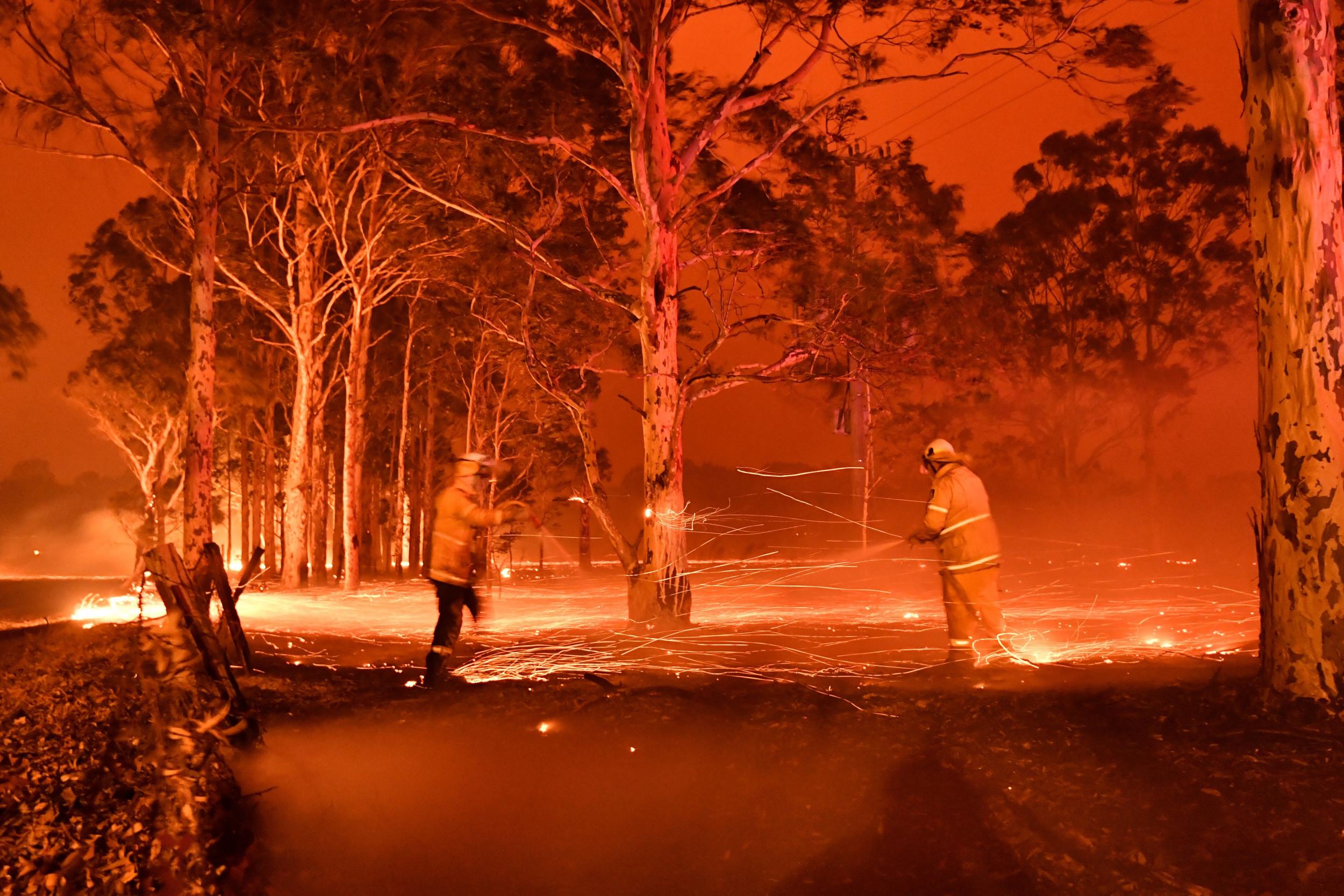 Αποτέλεσμα εικόνας για australia wildfires