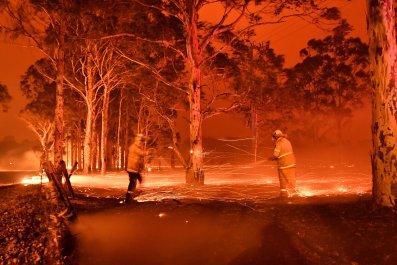 Wildfire 2020 January Oz