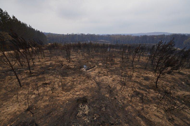 Oz Wildfire Map Latest Update Jan 6