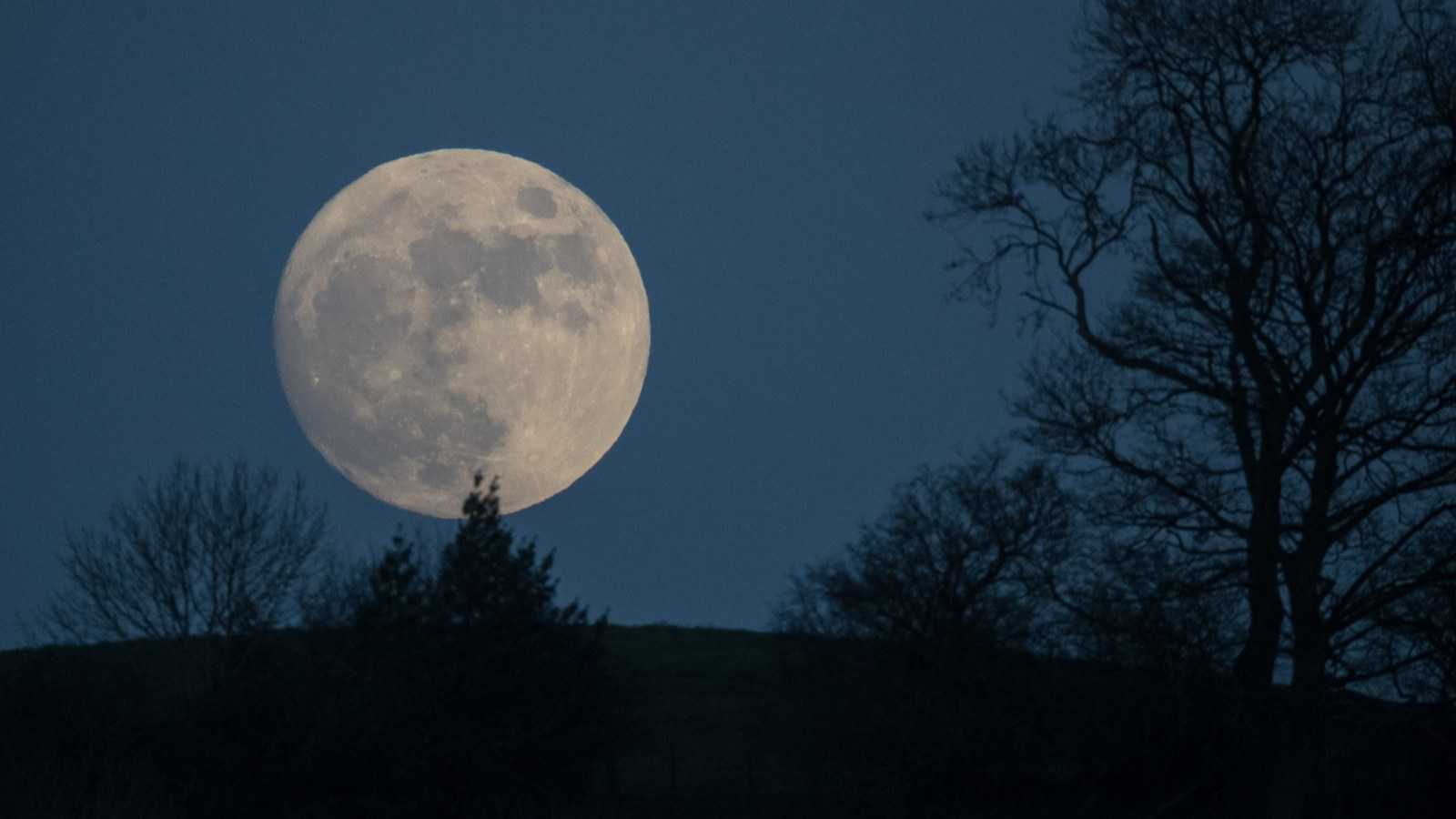 Full Wolf Moon Eclipse First Full Moon Of 2020 To Rise This Week