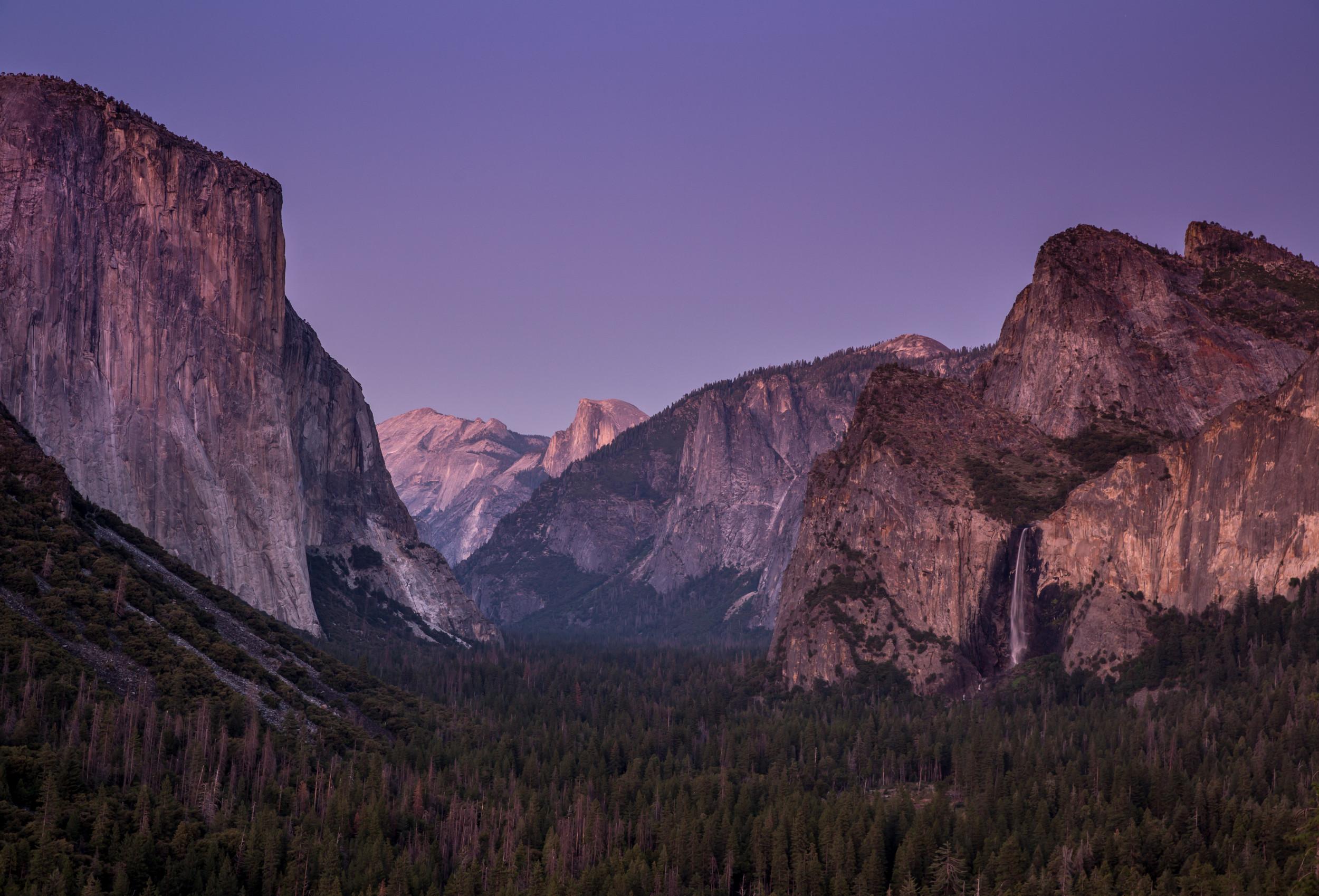 What Is Norovirus  Nearly 200 Visitors To Yosemite