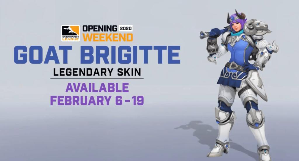 Brigitte Overwatch Goat Skin