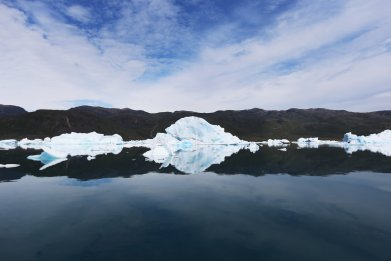 Icebergs from Twin Glaciers