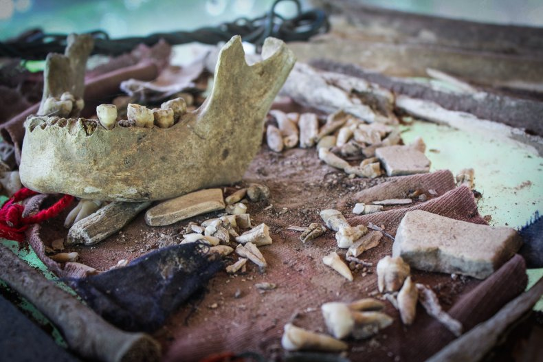 A human jawbone and other bone fragments