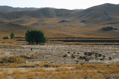 Ghazni Province in Afghanistan