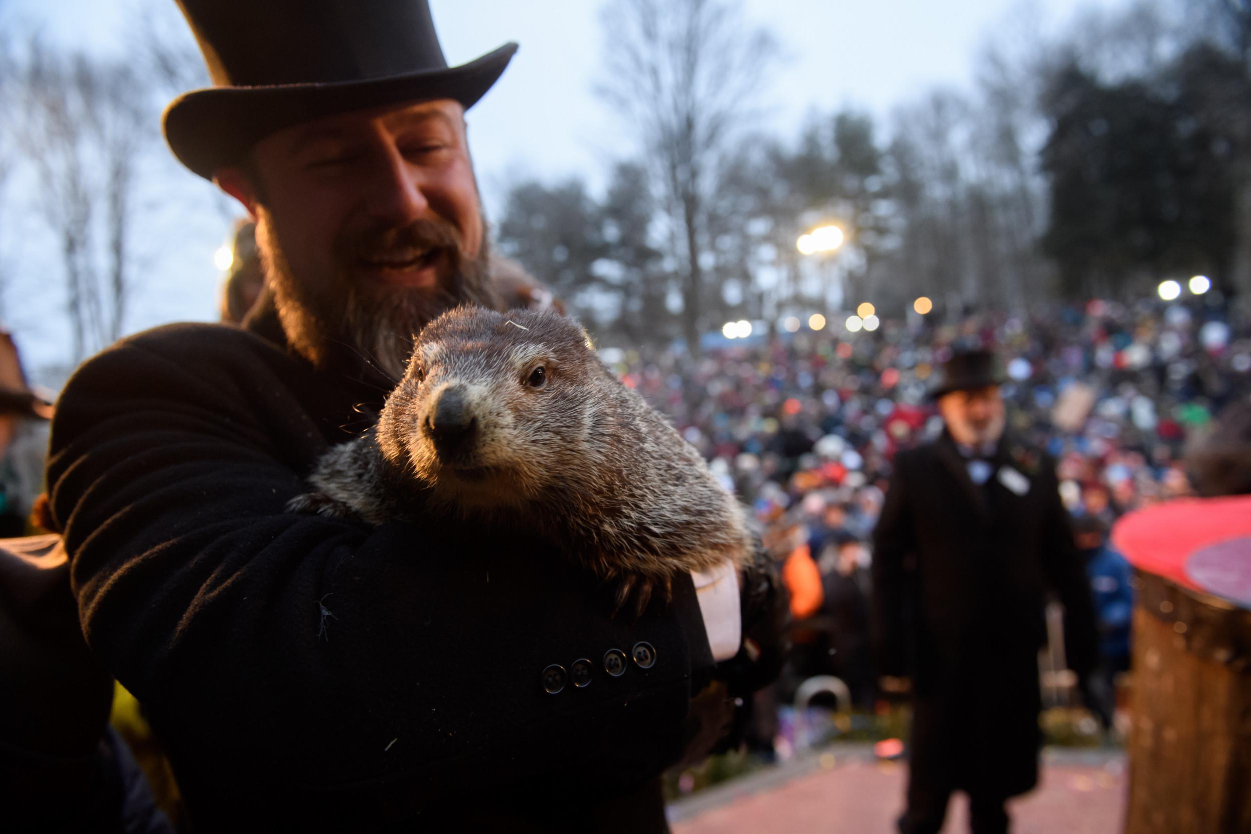 groundhog day 2020 punxsutawney