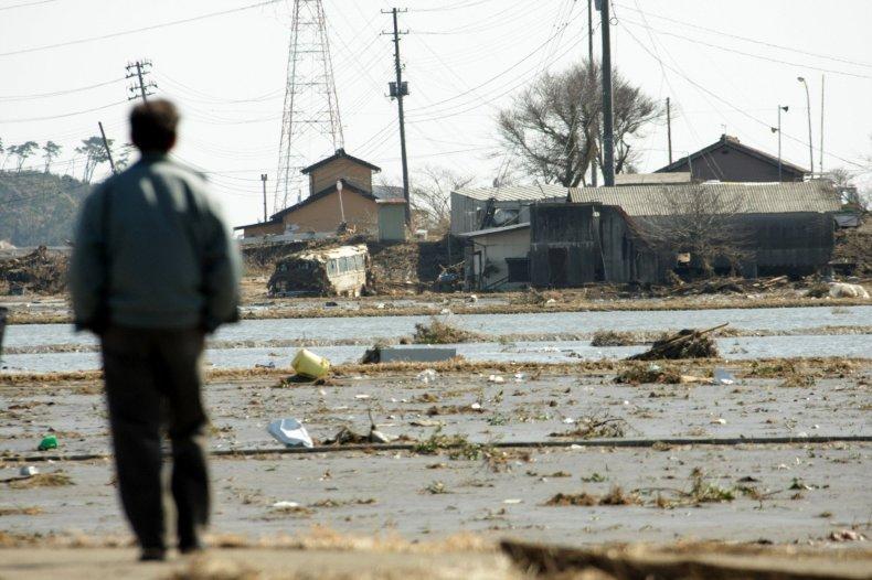Tsunami, 2011 Japan