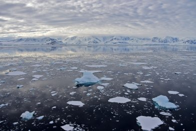 South Shetland Islands, Antarctica