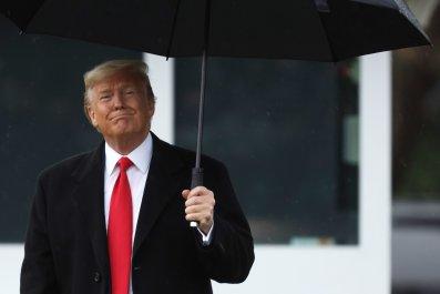 president donald trump, white house,