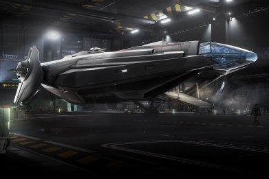 star citizen carrack hangar