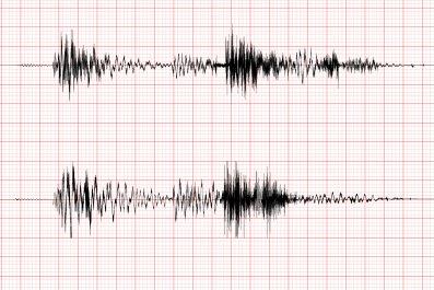 stock image of seismogram