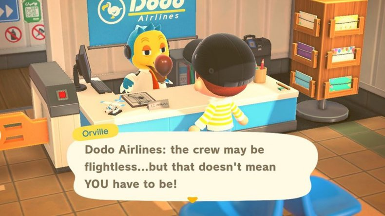 animal crossing new horizons airport dodo airlines