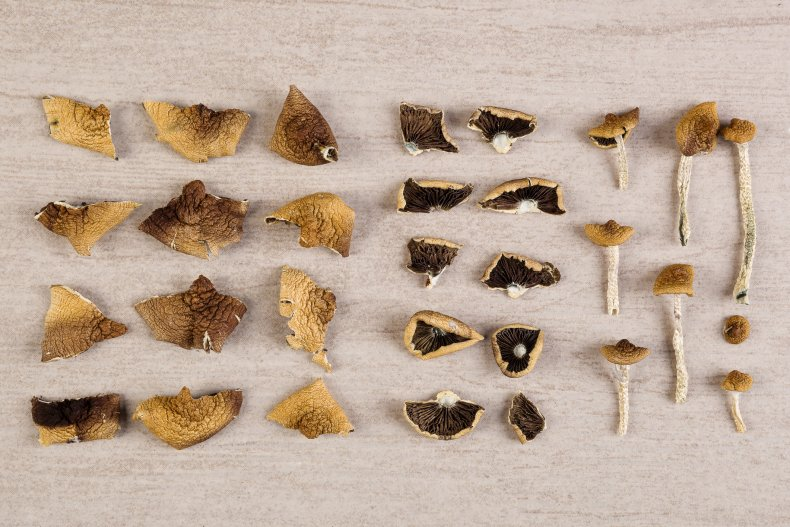 psilocybin, magic mushrooms, drugs, psychedelics, stock, getty