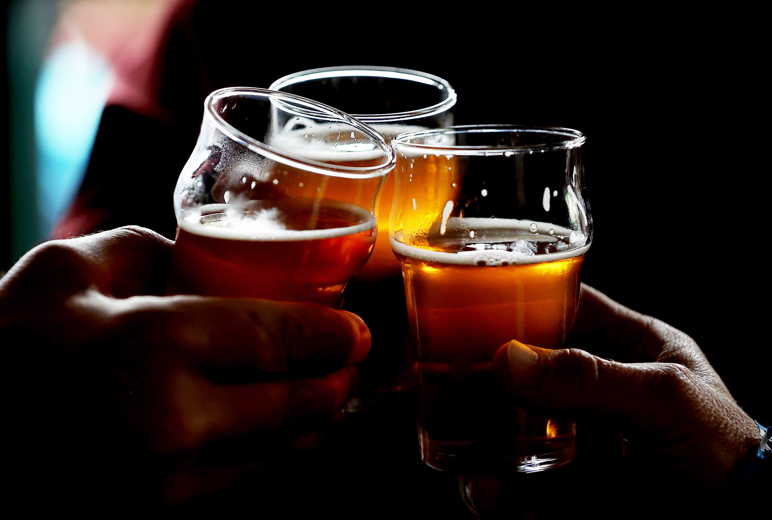 National Beer Day 2020 Deals On Mixed Cases Homebrew Starter Kits Apparel And Equipment