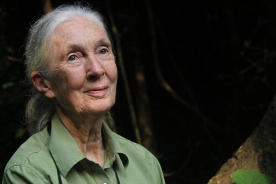 Jane Goodall in Gombe National Park